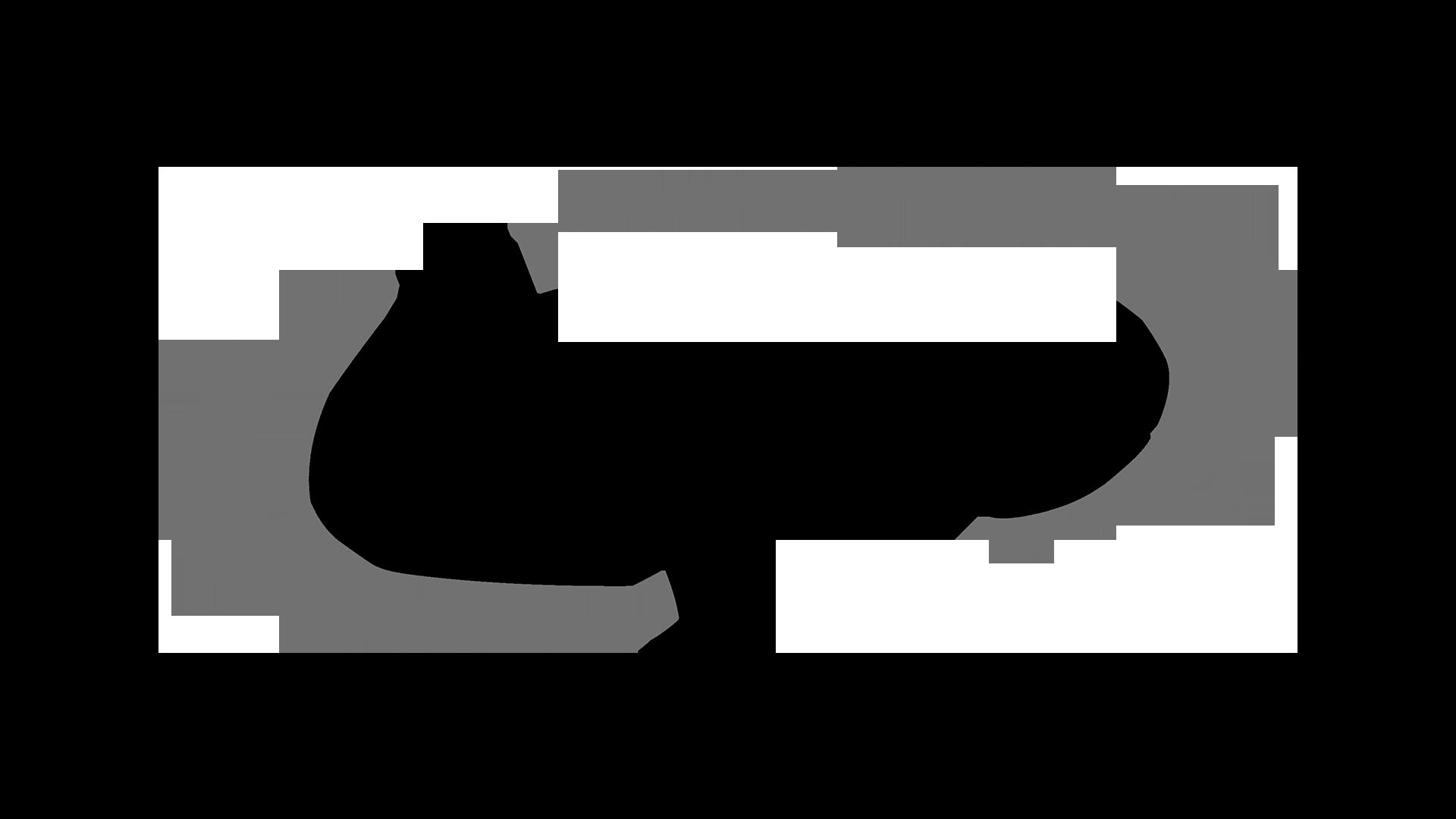 Layne CKP logo.png
