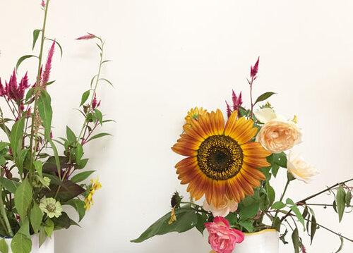 ccb-flower.jpg