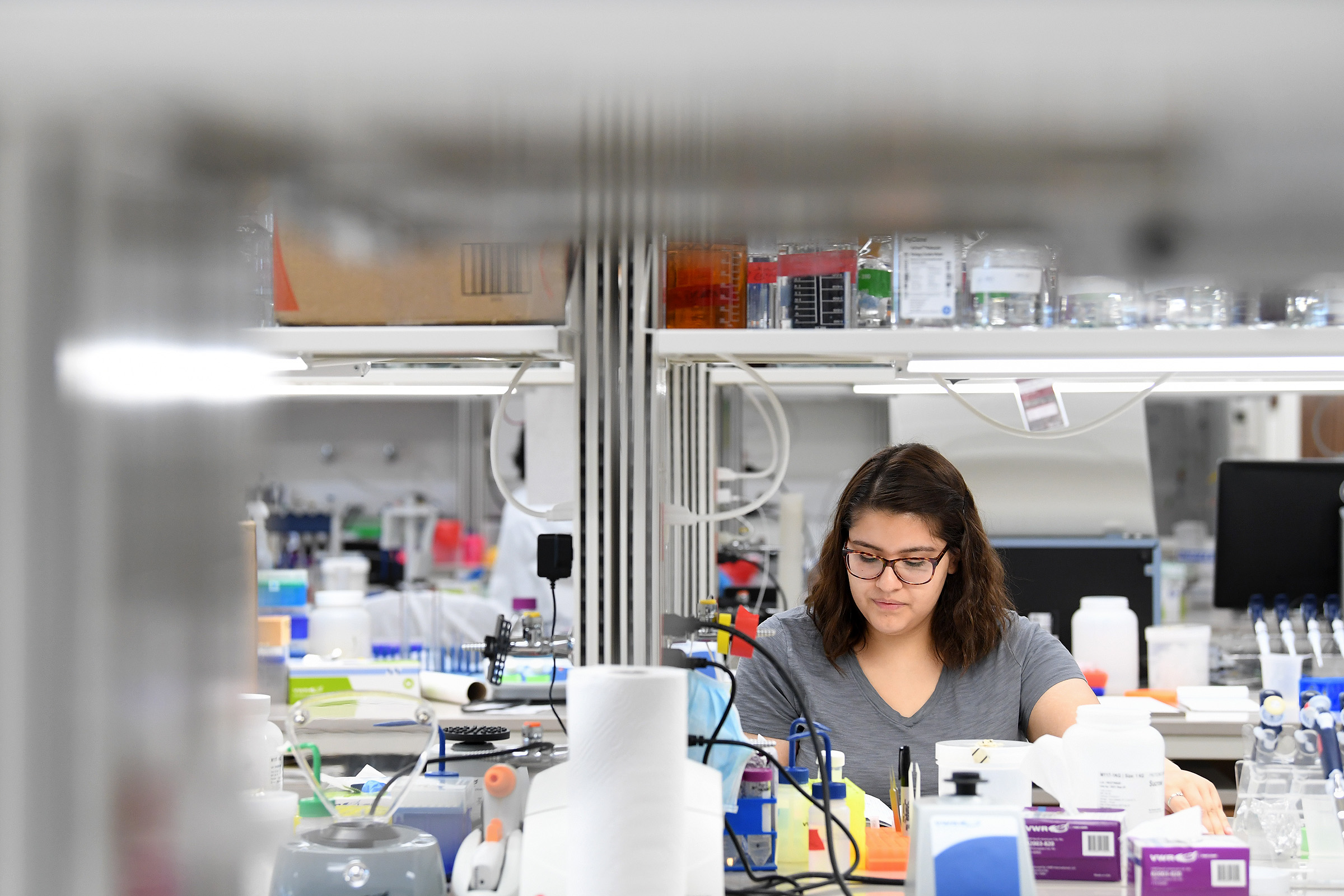 Cindy Mora, a student attending a summer research program at Texas A&M, works Tuesday, June 25, 2019 in a lab at the Medical Research and Education Building II at the Texas A&M University Health Science Center in Bryan, Texas. (Laura McKenzie/The Eagle)