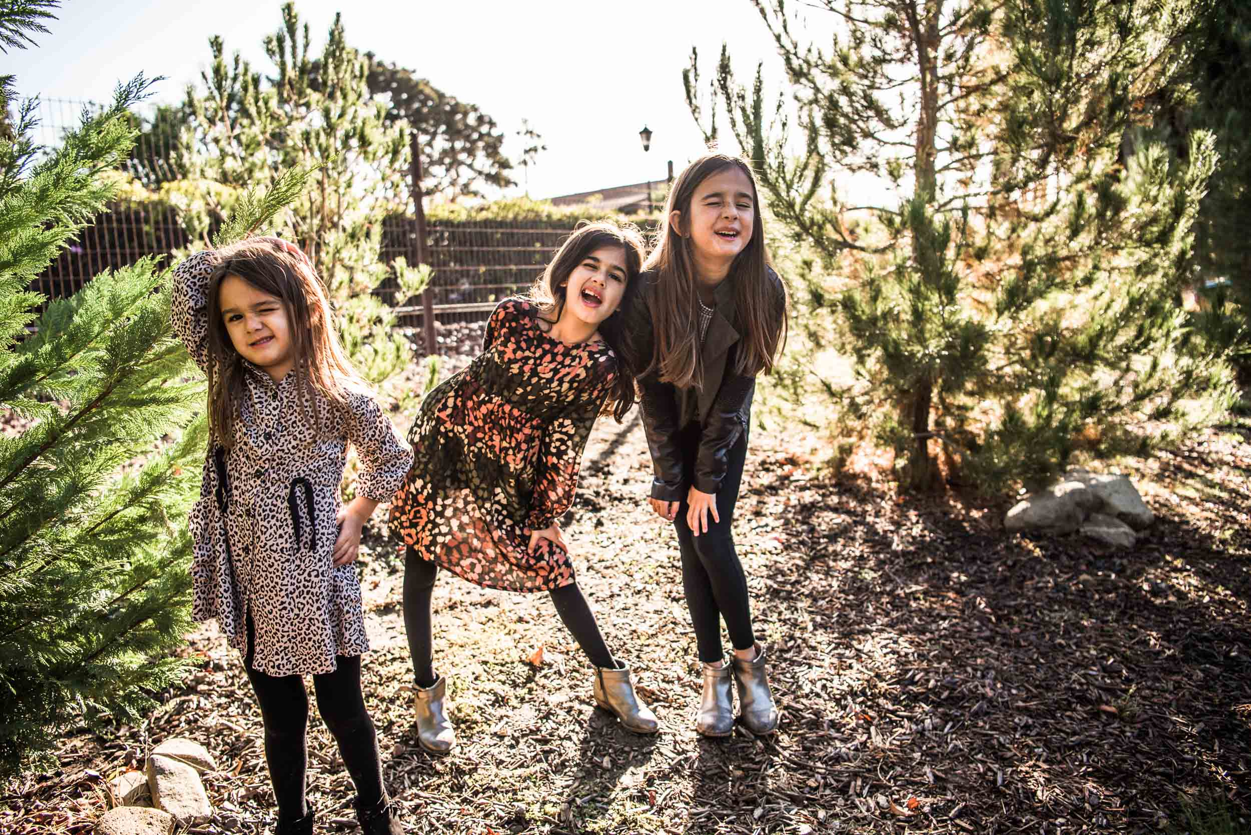 Lisa Hu Chen orange county family photographer sisters winking in jacks forest among mini trees in san juan capistrano #jacksforest