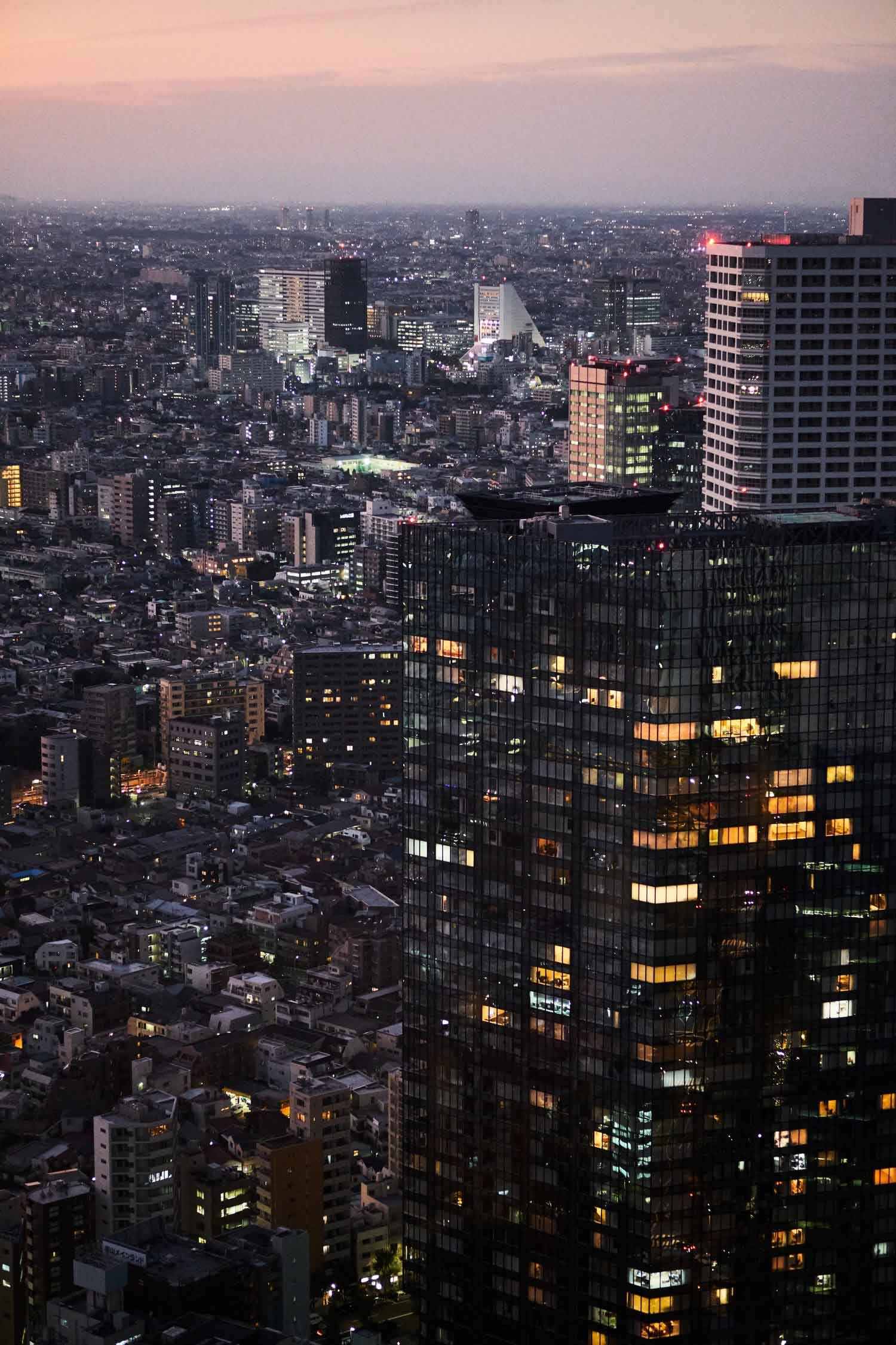 tokyo-from-above.jpg