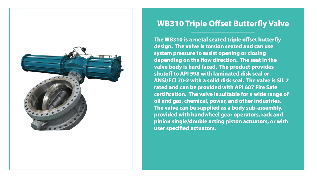 wb310-triple-offset-butterfly-valve.png