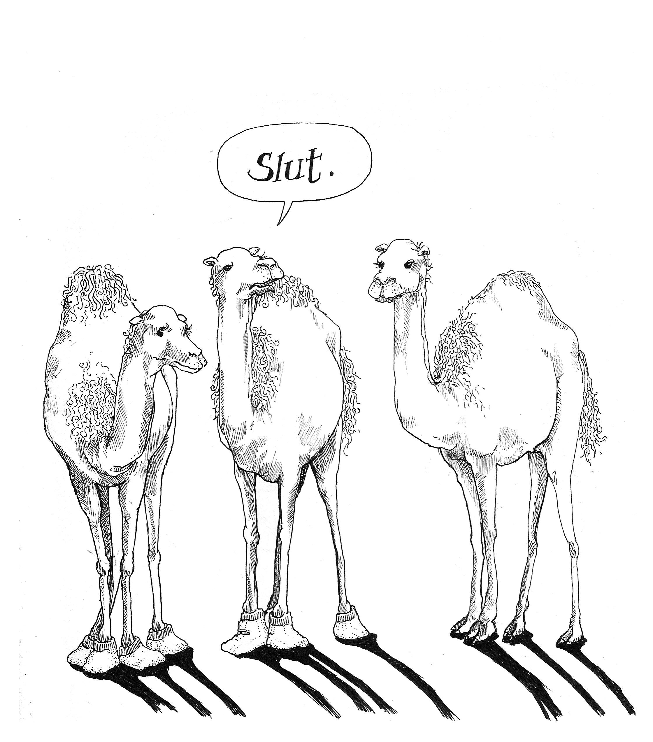 Cameltoes.JPG