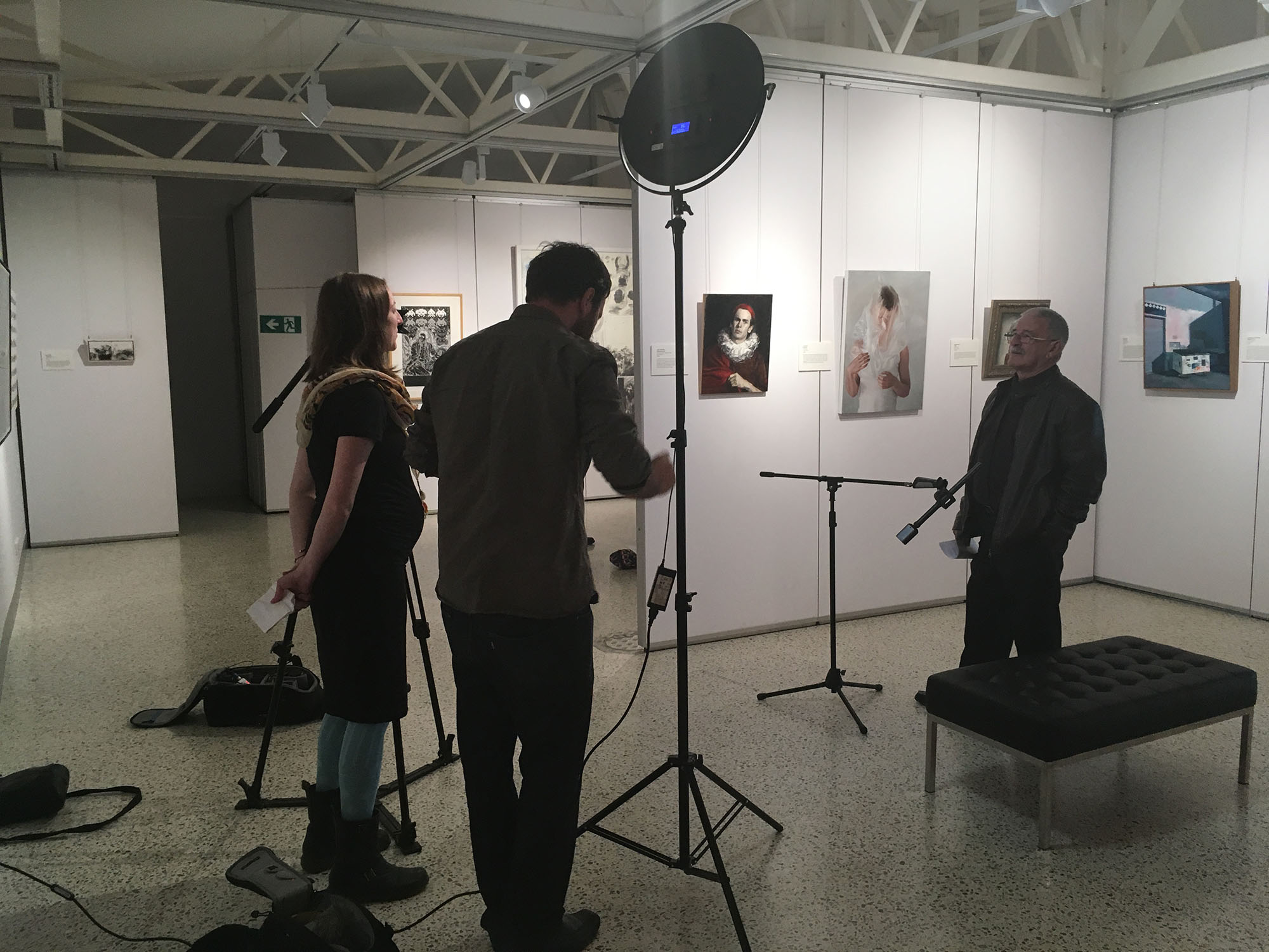 Artspiration filming at the Collie Art Gallery web.jpg