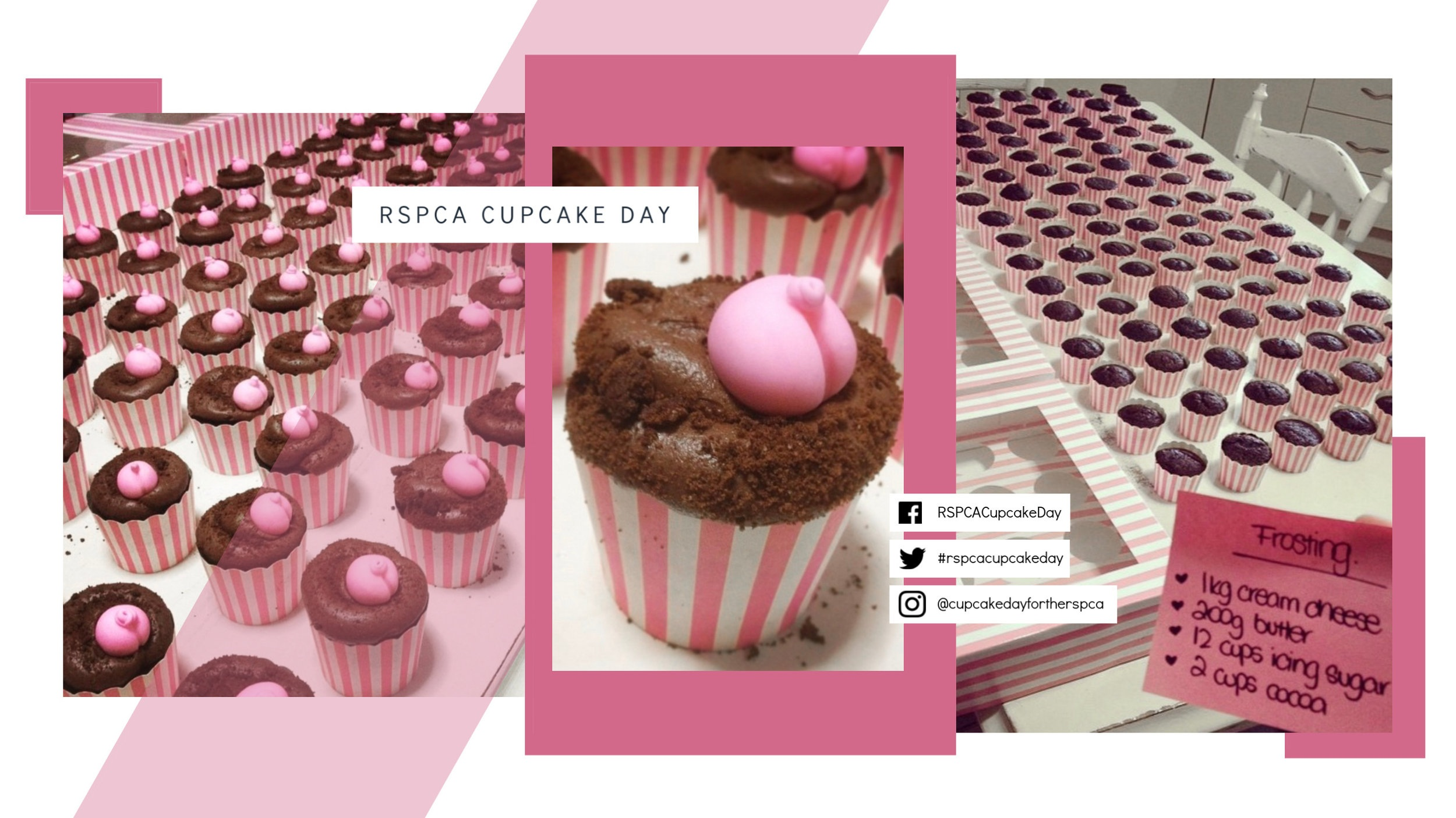 Image above:  Over 100  'cheeky' animal-themed creations baked by Petula for RSPCA Cupcake Day!
