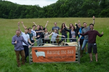 Team building at Raising the Baa