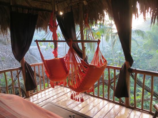 dominican-tree-house.jpg
