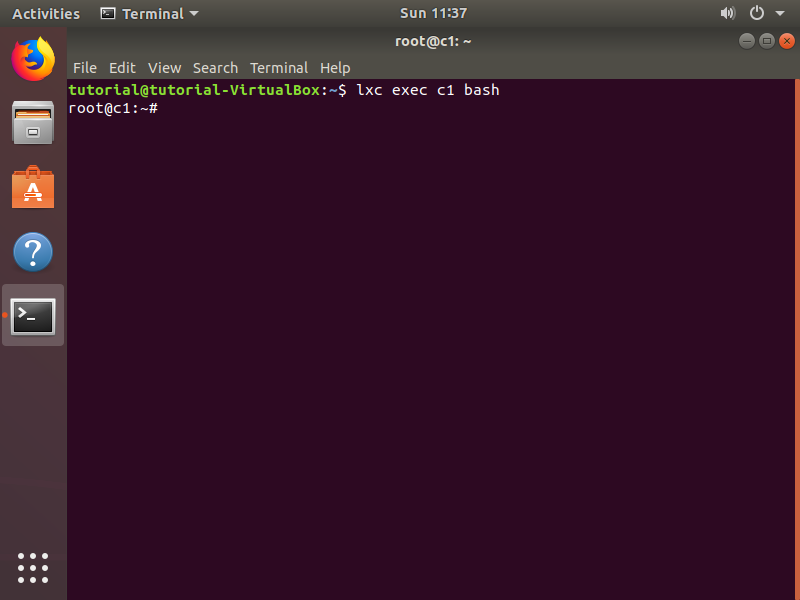 Step 7. Now it's time to step into this container. Open a bash terminal inside c1.