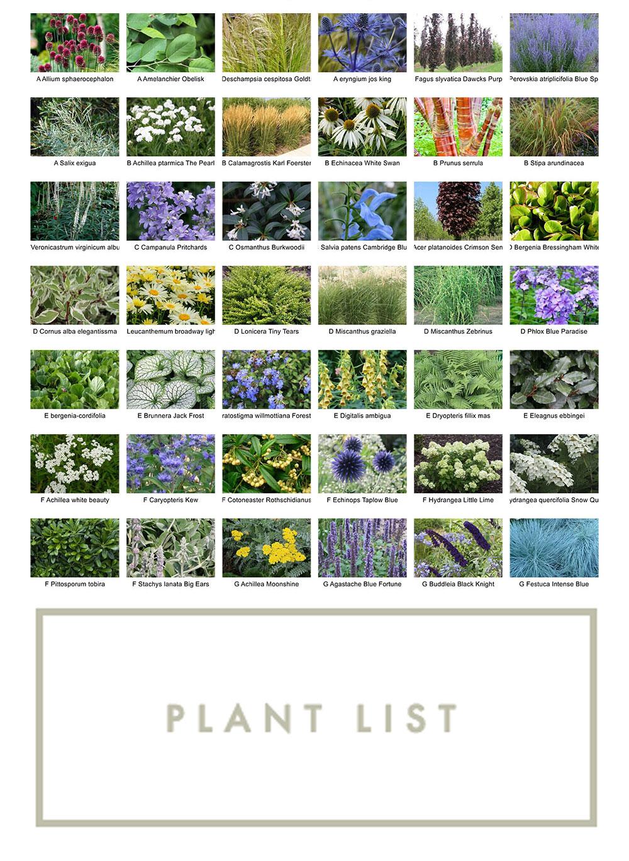 Plantlist-for-WebsiteThumbnail.jpg