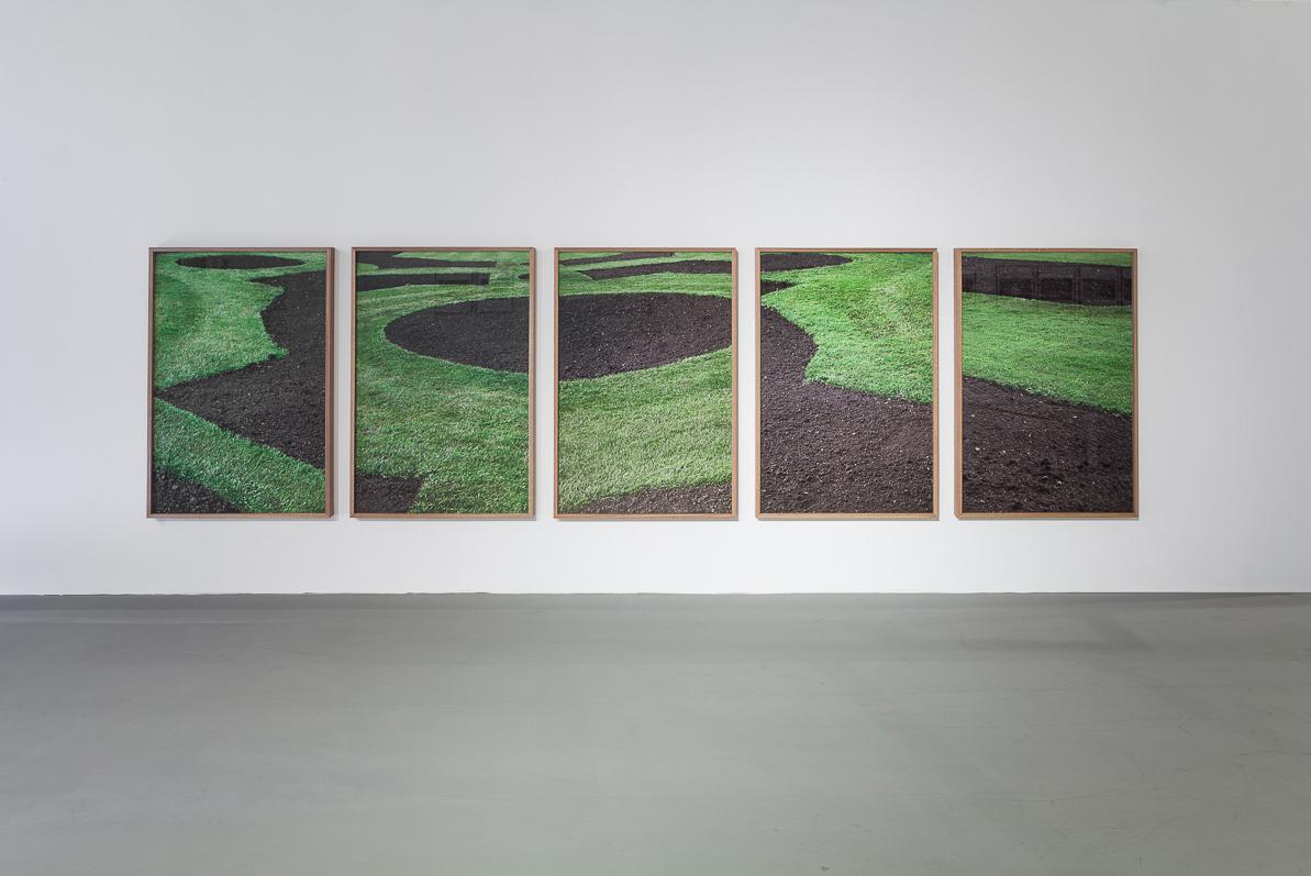 Green Grass, Brown Soil