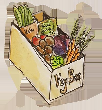veg box 2.png
