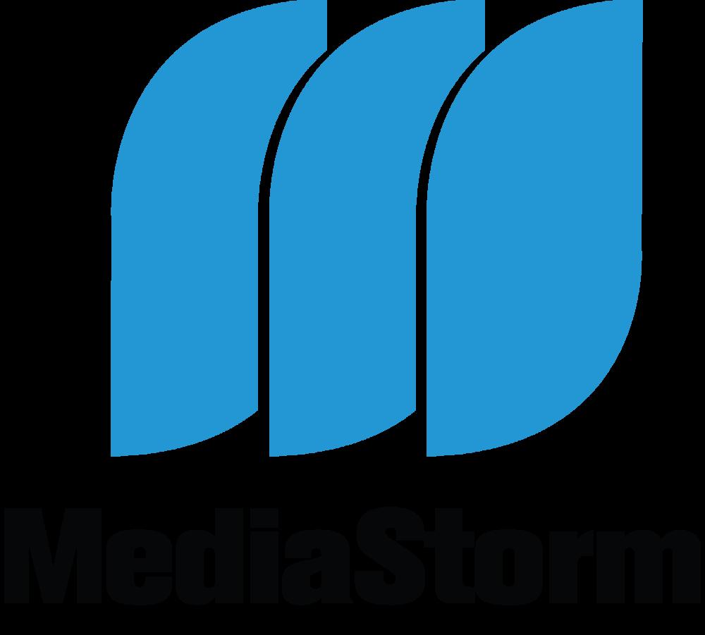 mediastorm-on-white-logo.png