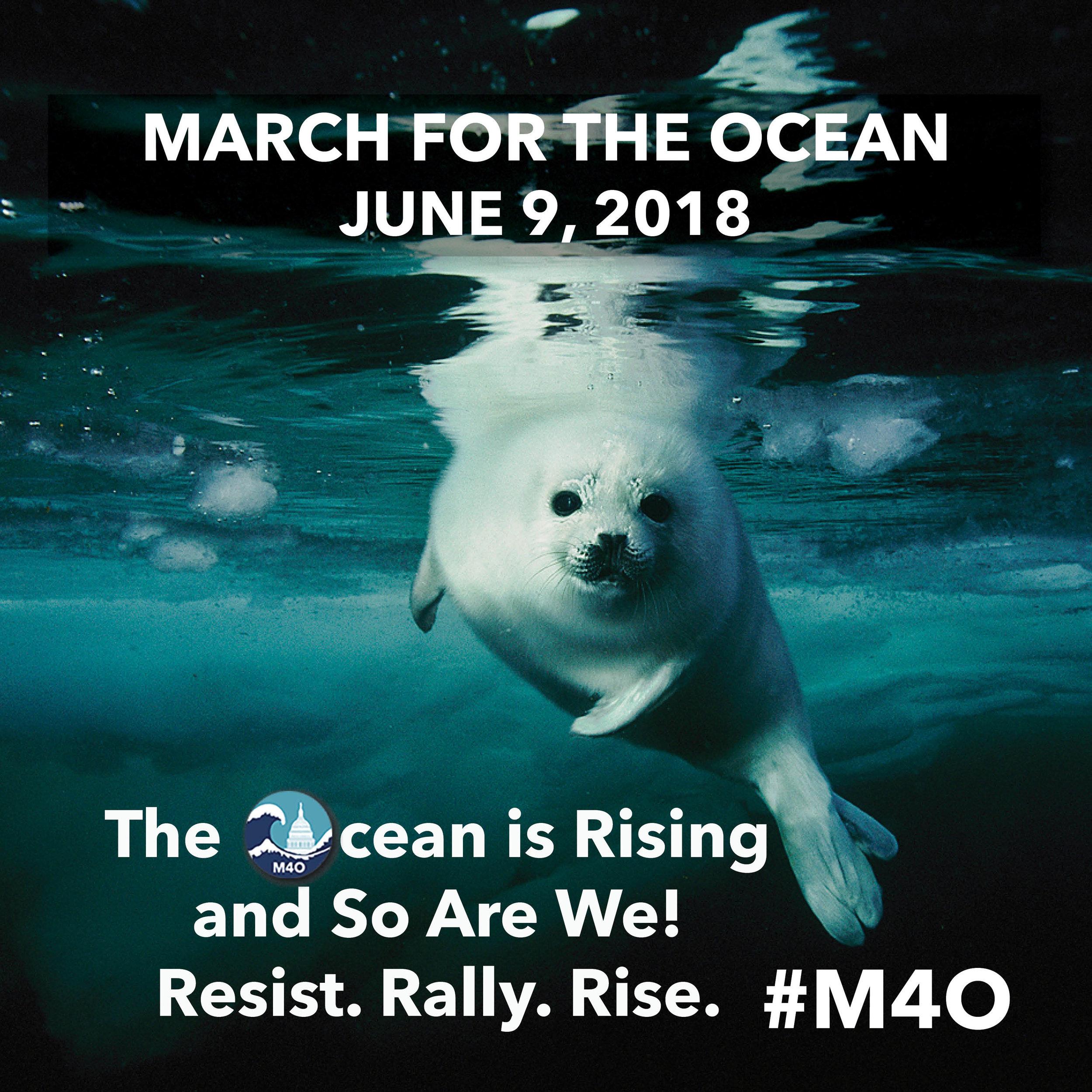 #TheOceanIsRising #AndSoAreWe