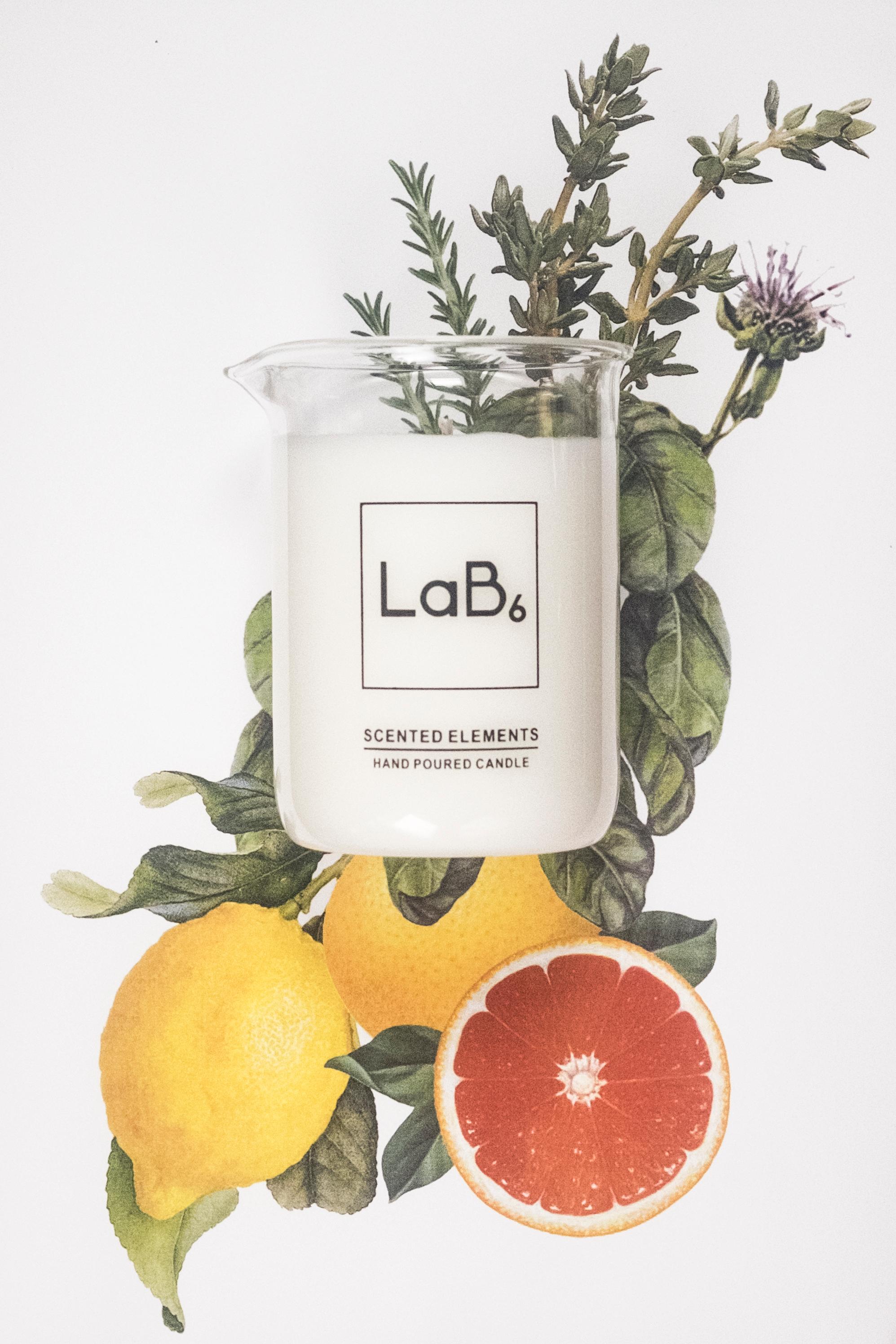 7.01 Sorrel and Lemon Thyme