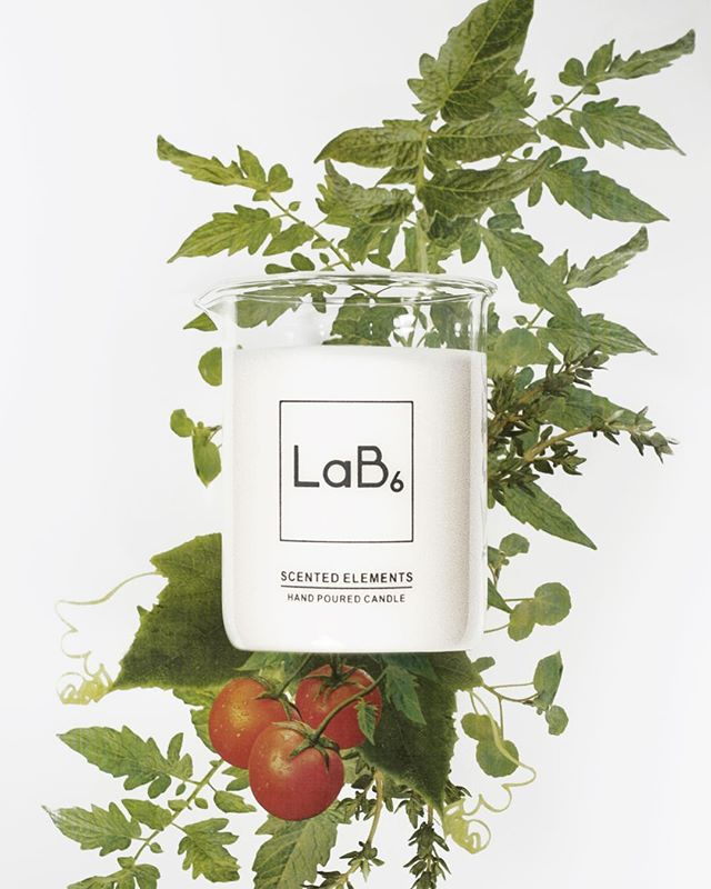 We have been pouring lots of our new fragrance The Greenhouse. Rich in he fragrance of growing tomatoes and cucumber plants. It's uplifting and bright. #newfragrance #tomatoes #cucumber #fresh #uplifting #handpoured #scentedcandle