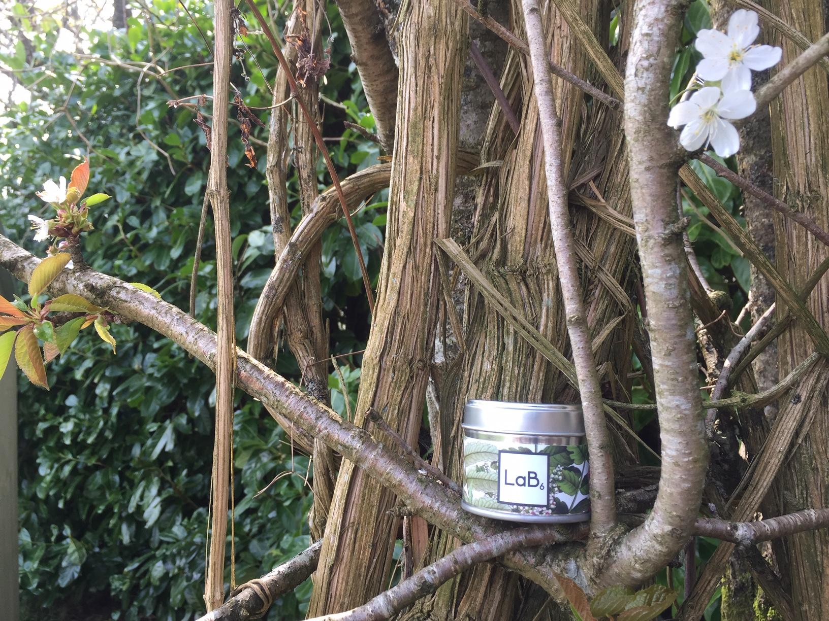 Frankincense and Sweet Myrrh Travel Tin.JPG