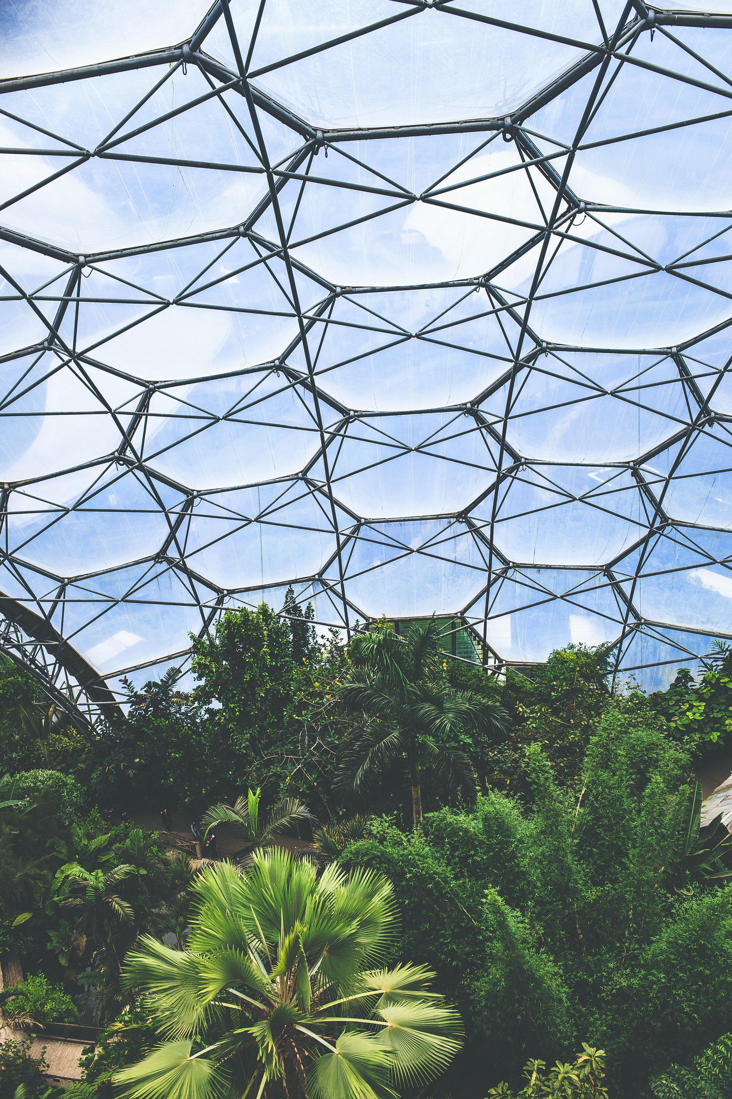 The Biodome -  Simply awe-inspiring