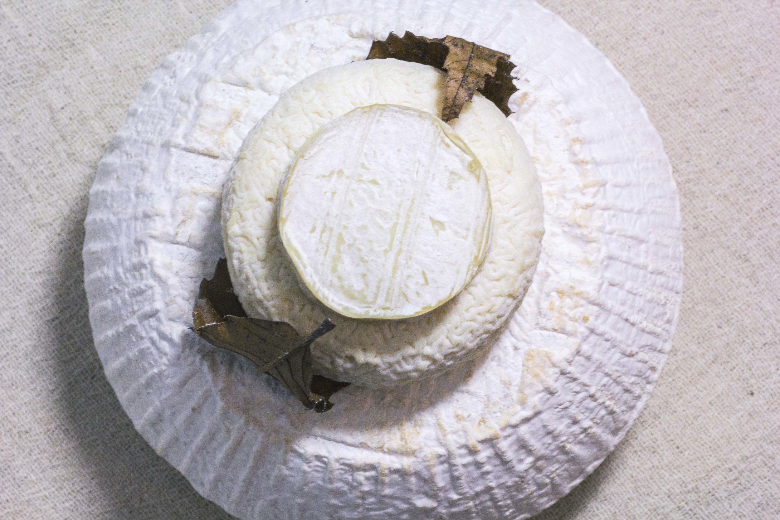 unpasteurised cheesesmall.jpg