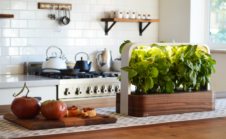 edn-smallgarden-white-kitchen-tomatoes-basil.png