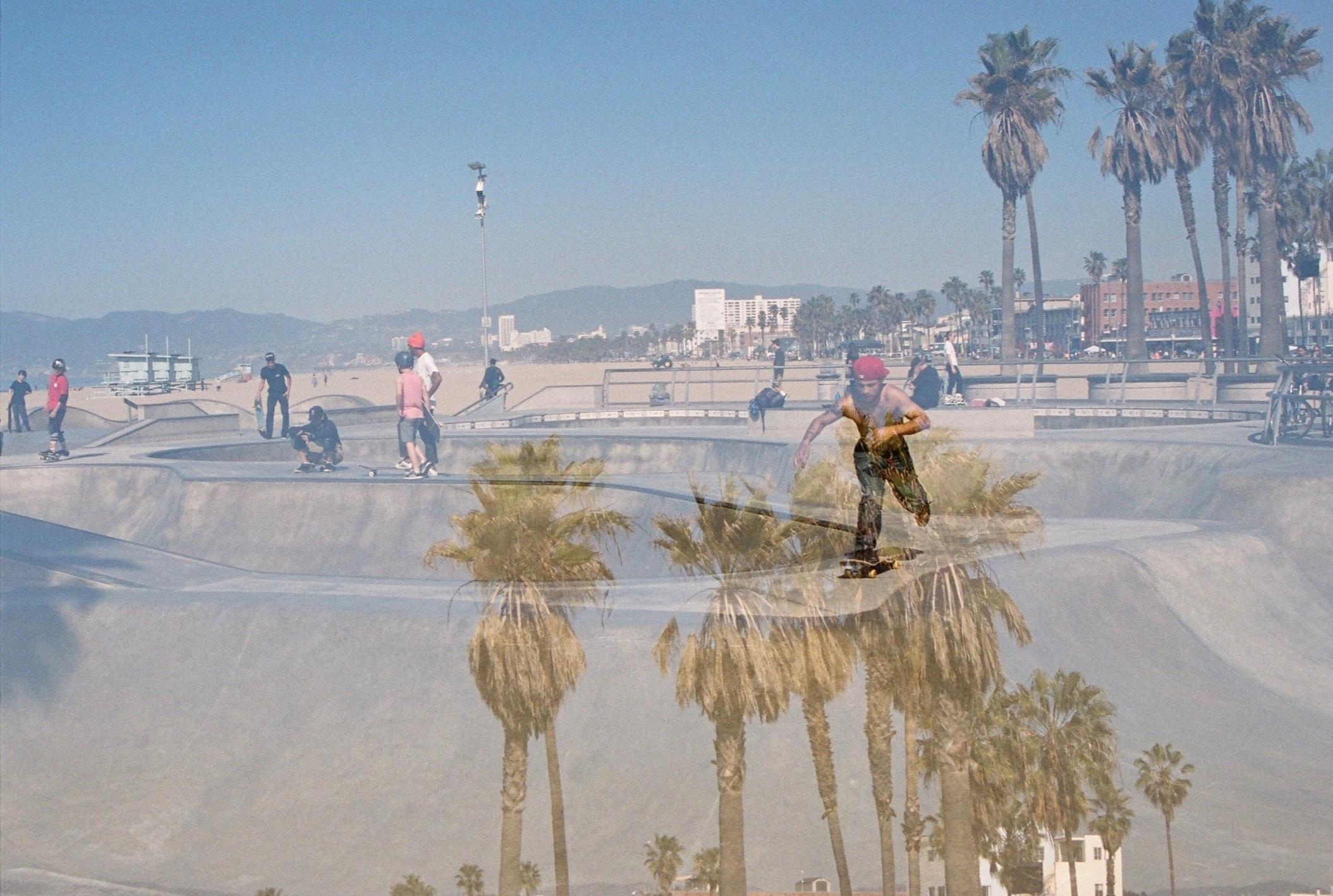 Palms & Skate