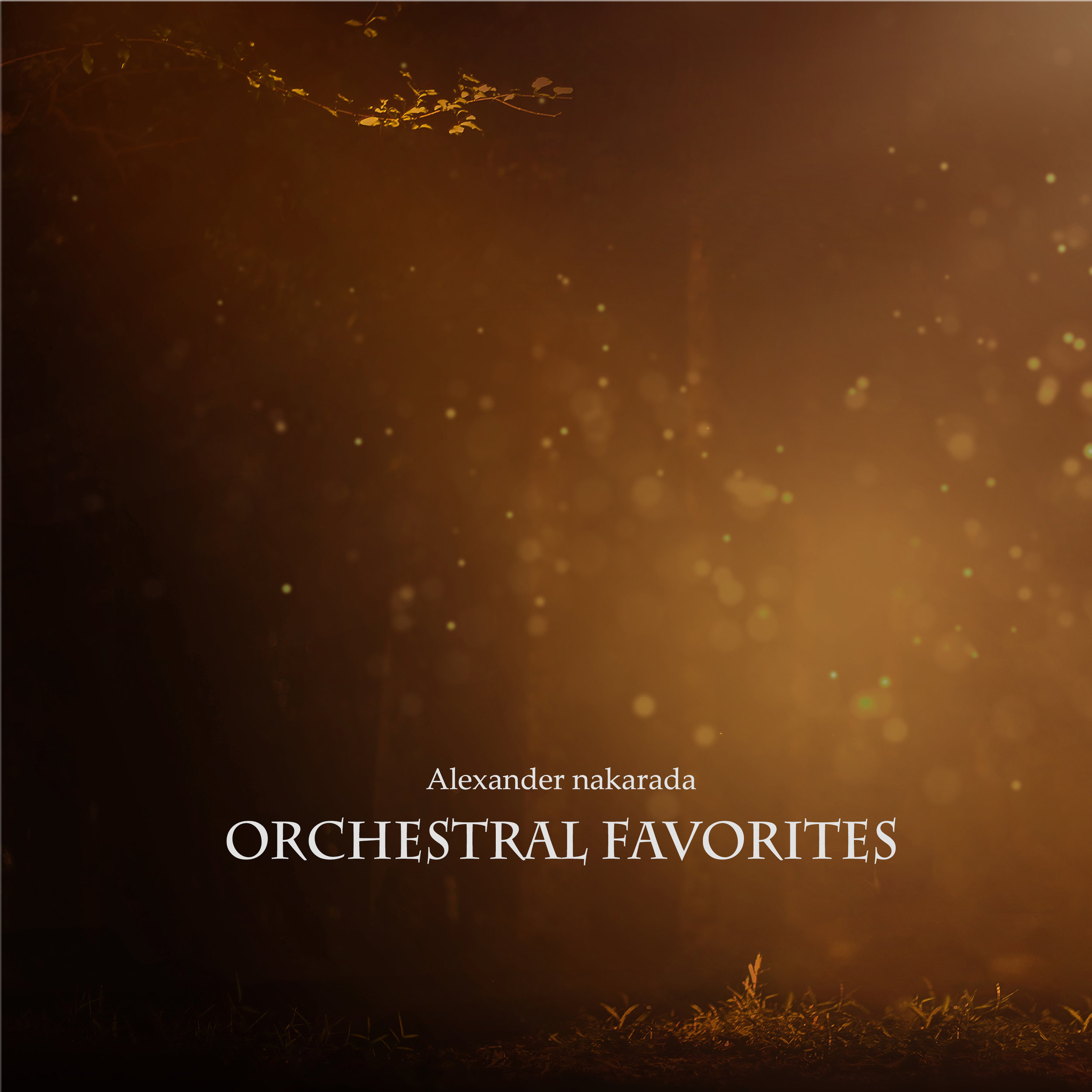 10. Orchestral Favorites - The is simply a collection of the orchestral pieces I was most happy about. Hopefully you are too!