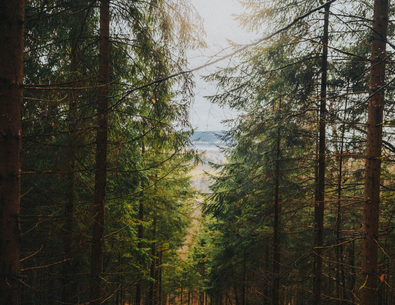 germany, neuschwanstein castle, bavaria, adventure, brydengivingphotographer, europe, photography, documentary, culture, travel, spring