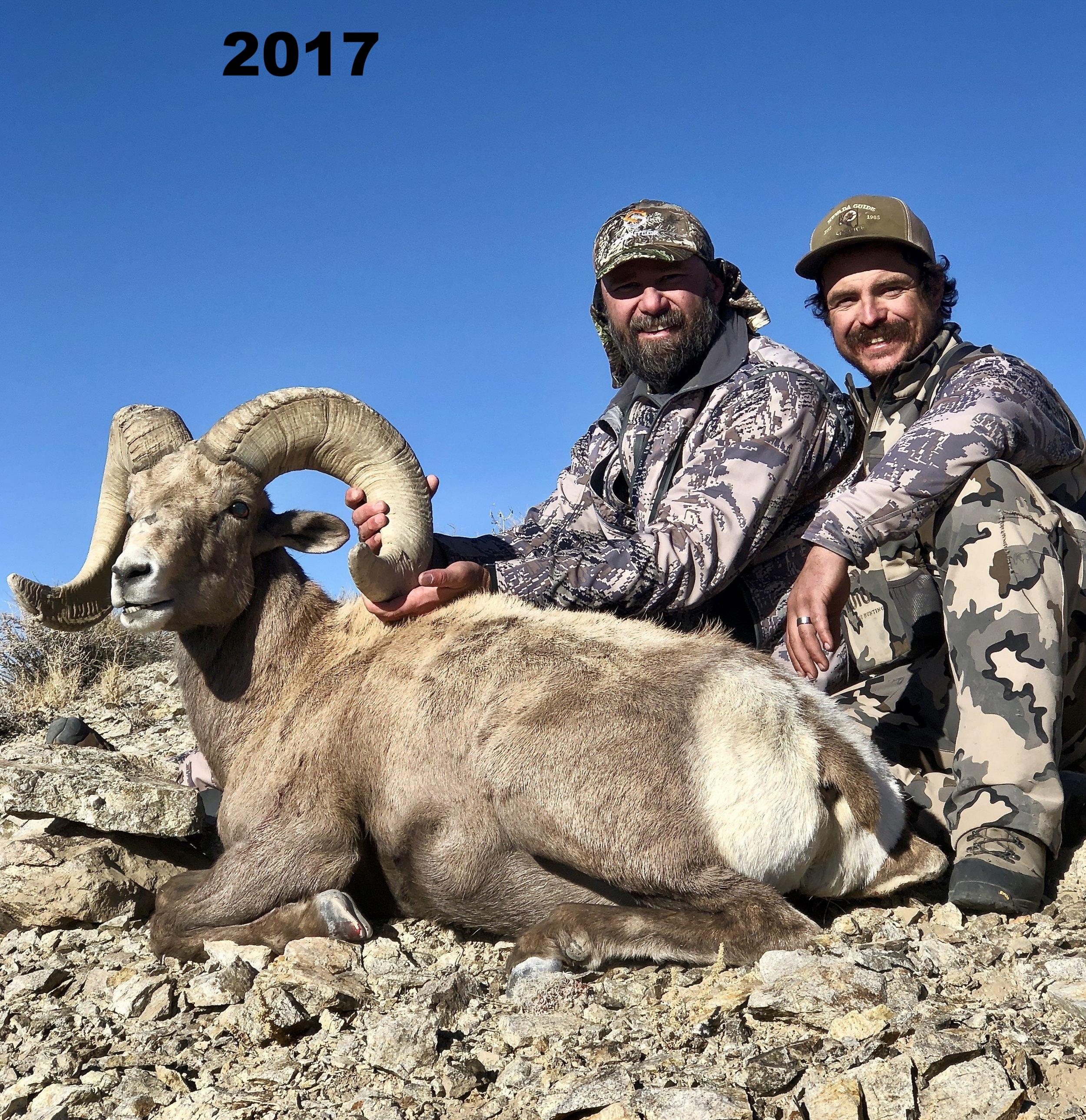 big-horn-sheep-hunt6.jpg