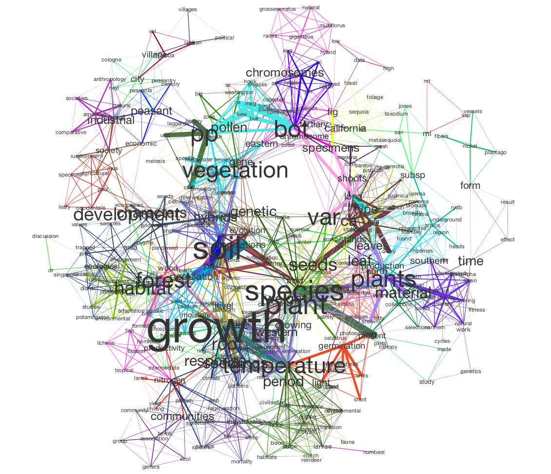 semantic_network-2.png
