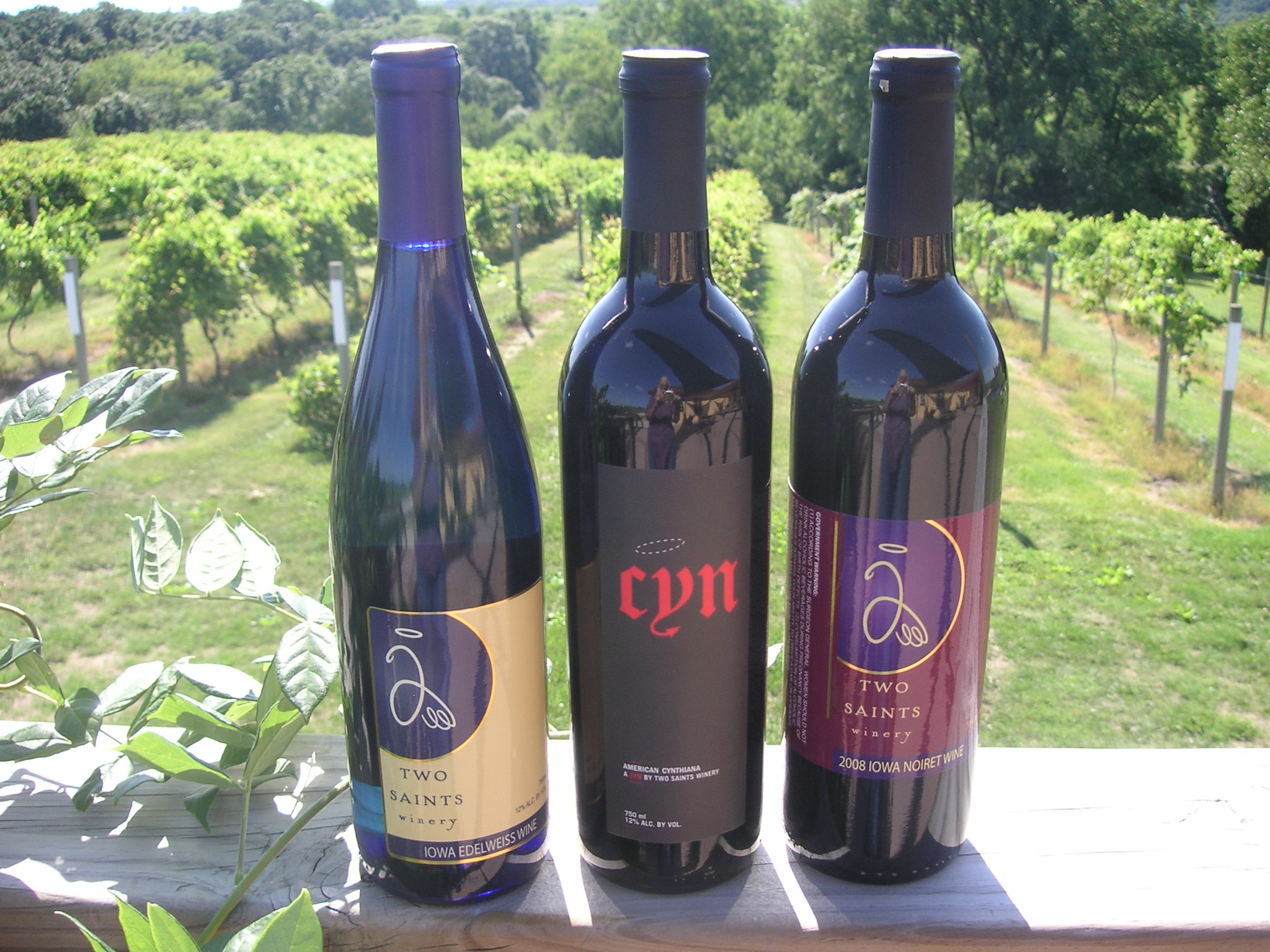 award winning wines.JPG
