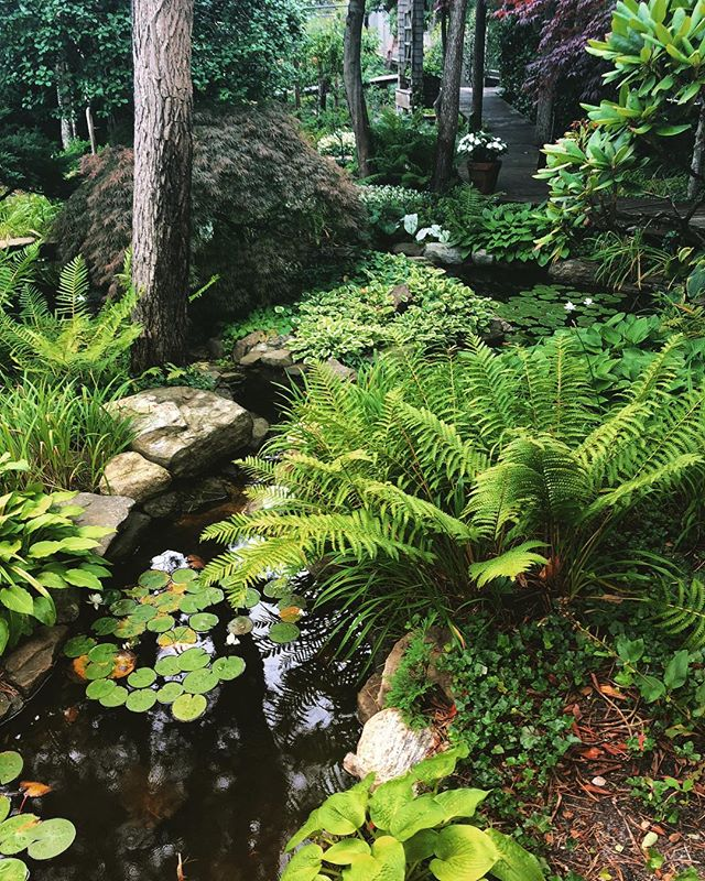Secret gardens of fire island #inspiration 🌿🌿🌿🌿