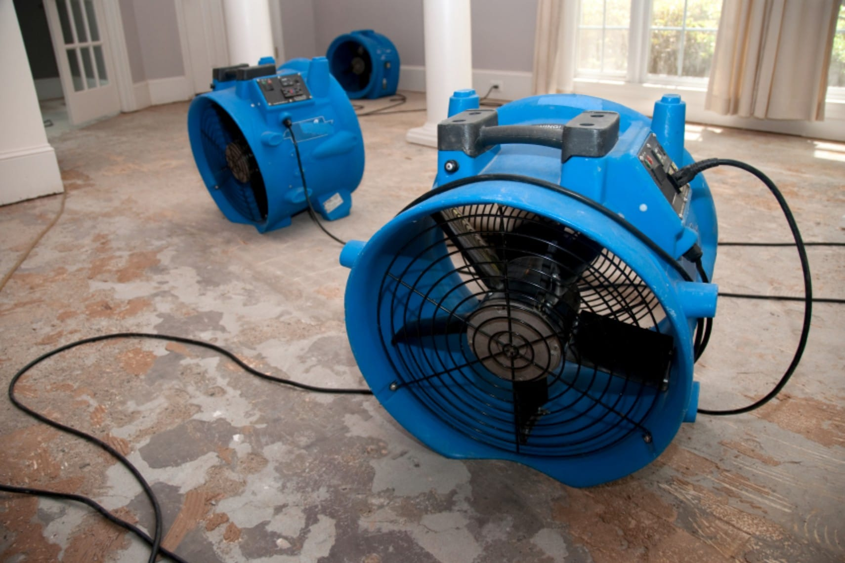iStock_000009743420Small-fans-picture-Copy_1.jpg