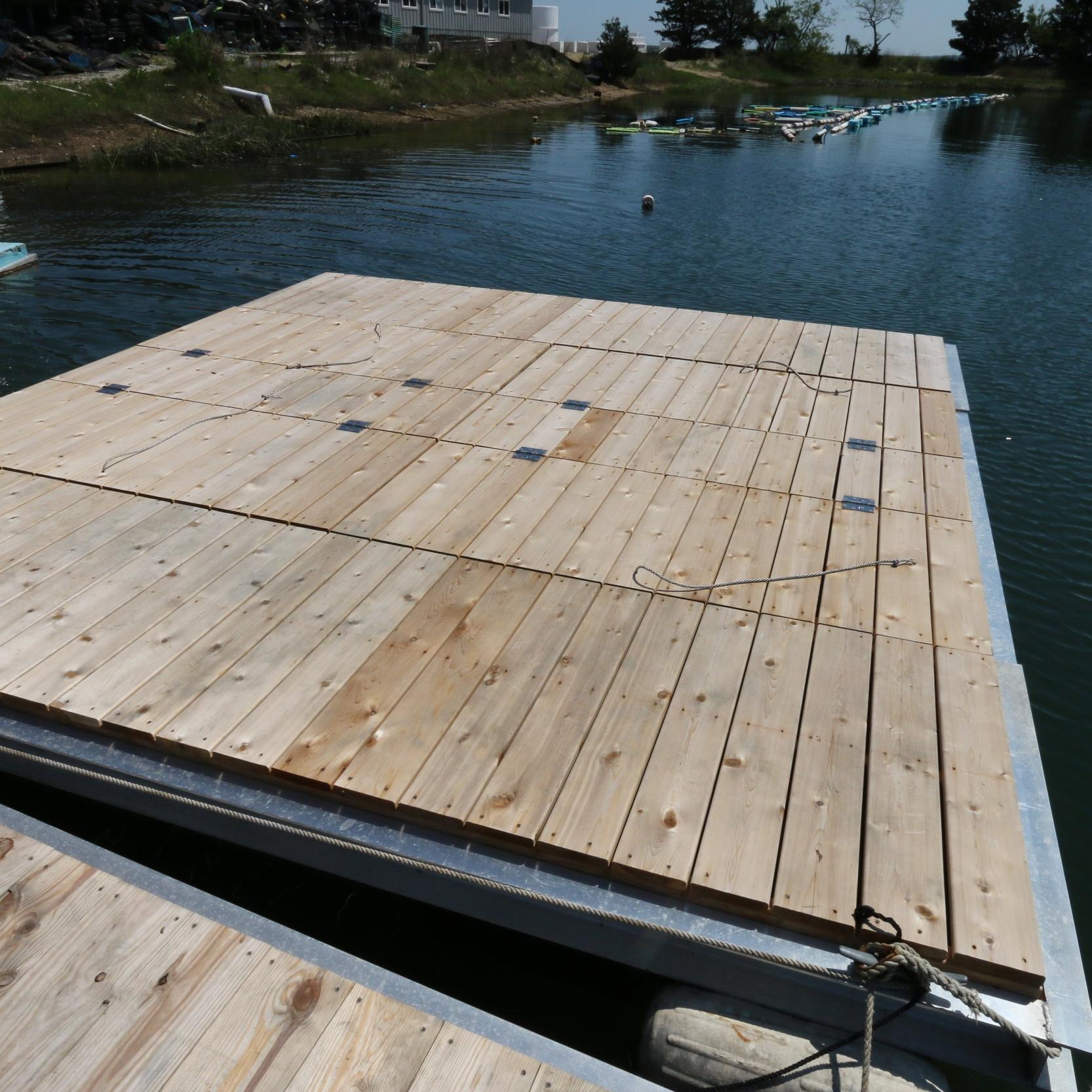 Floating Upweller Syster (FLUPSY)