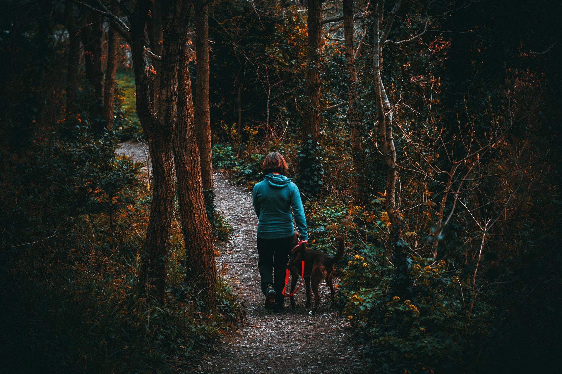 woman-walking-through-woods-with-dog.jpg
