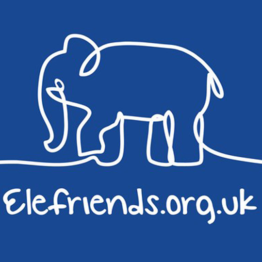 eLEFRIENDS - Elefriend is a supportive online community where, you can be yourself. A safe place to share your struggles, be heard and supported.