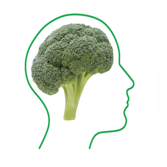 fOOD FOR THE BRAIN - Food for the Brain to raise awareness of the importance of optimum nutrition and take greater control of their own mental health