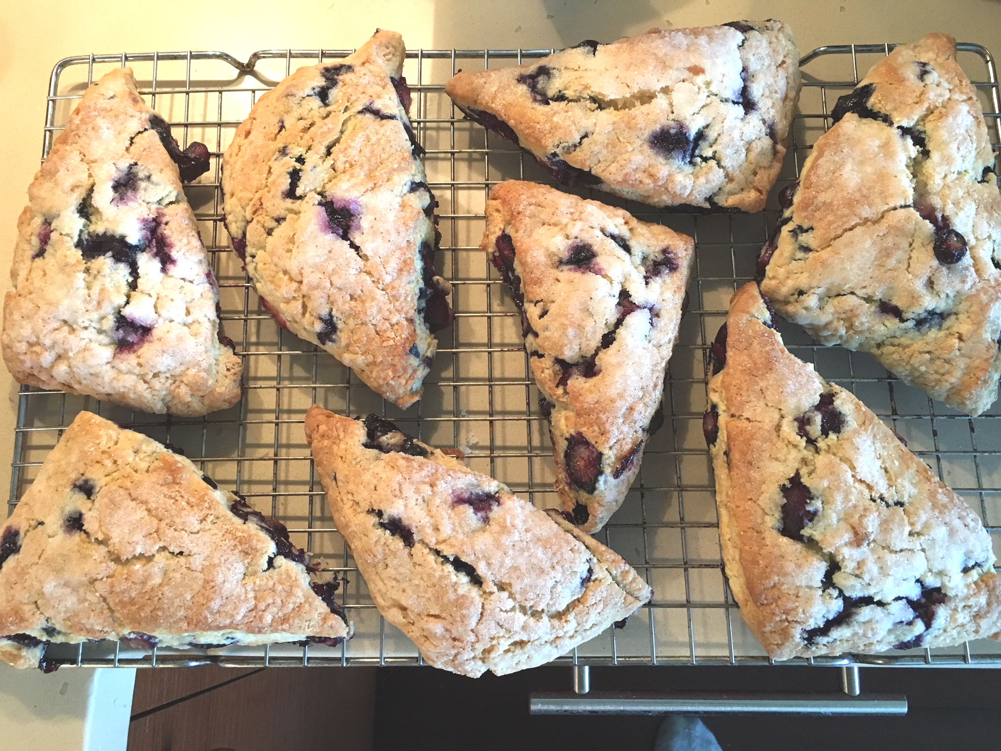 Blueberry scones made by South Waterfront resident and cook Terry Clancy.