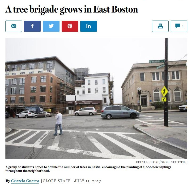 A tree brigade grows in East Boston