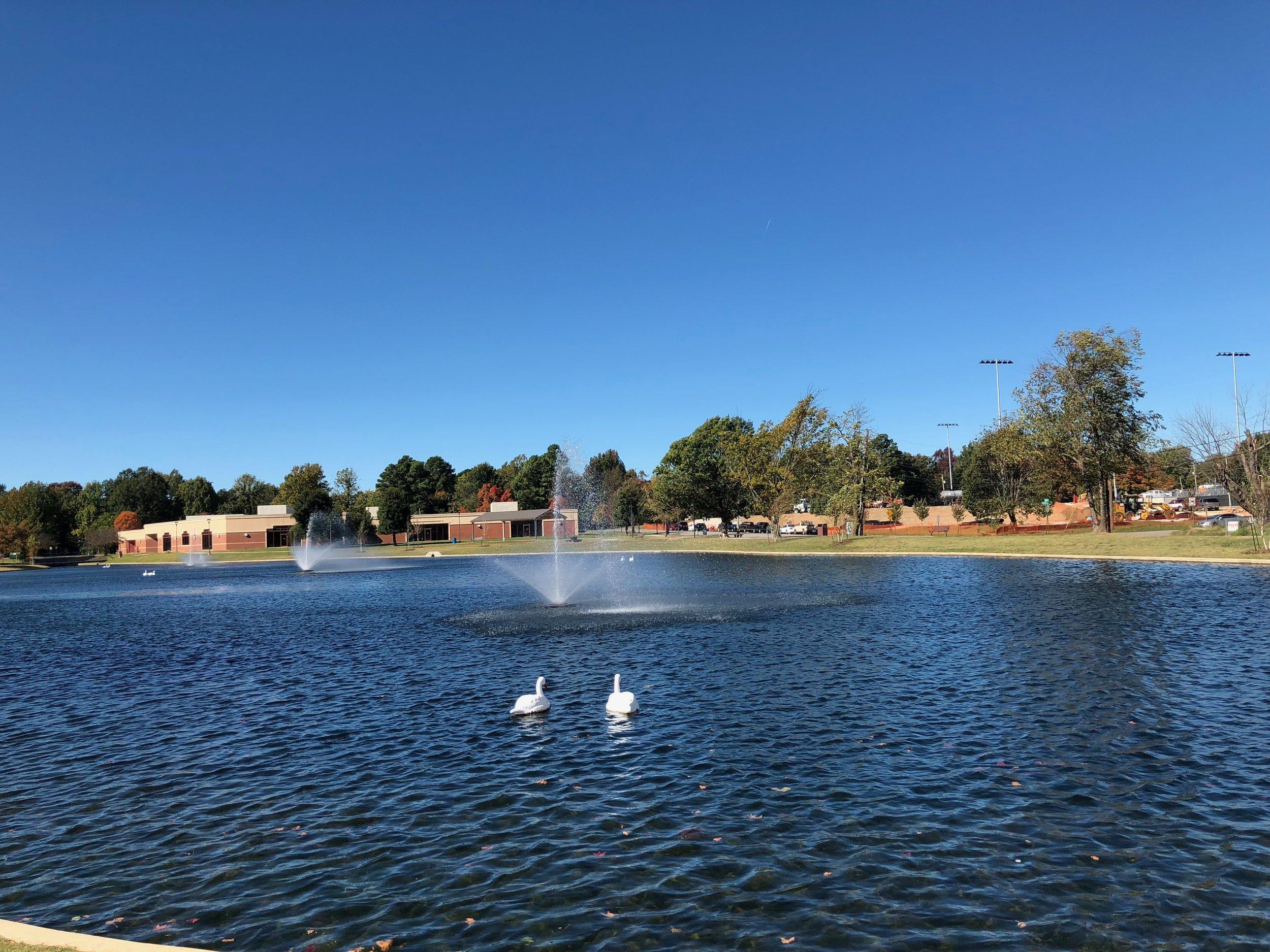View toward Springdale Public Library