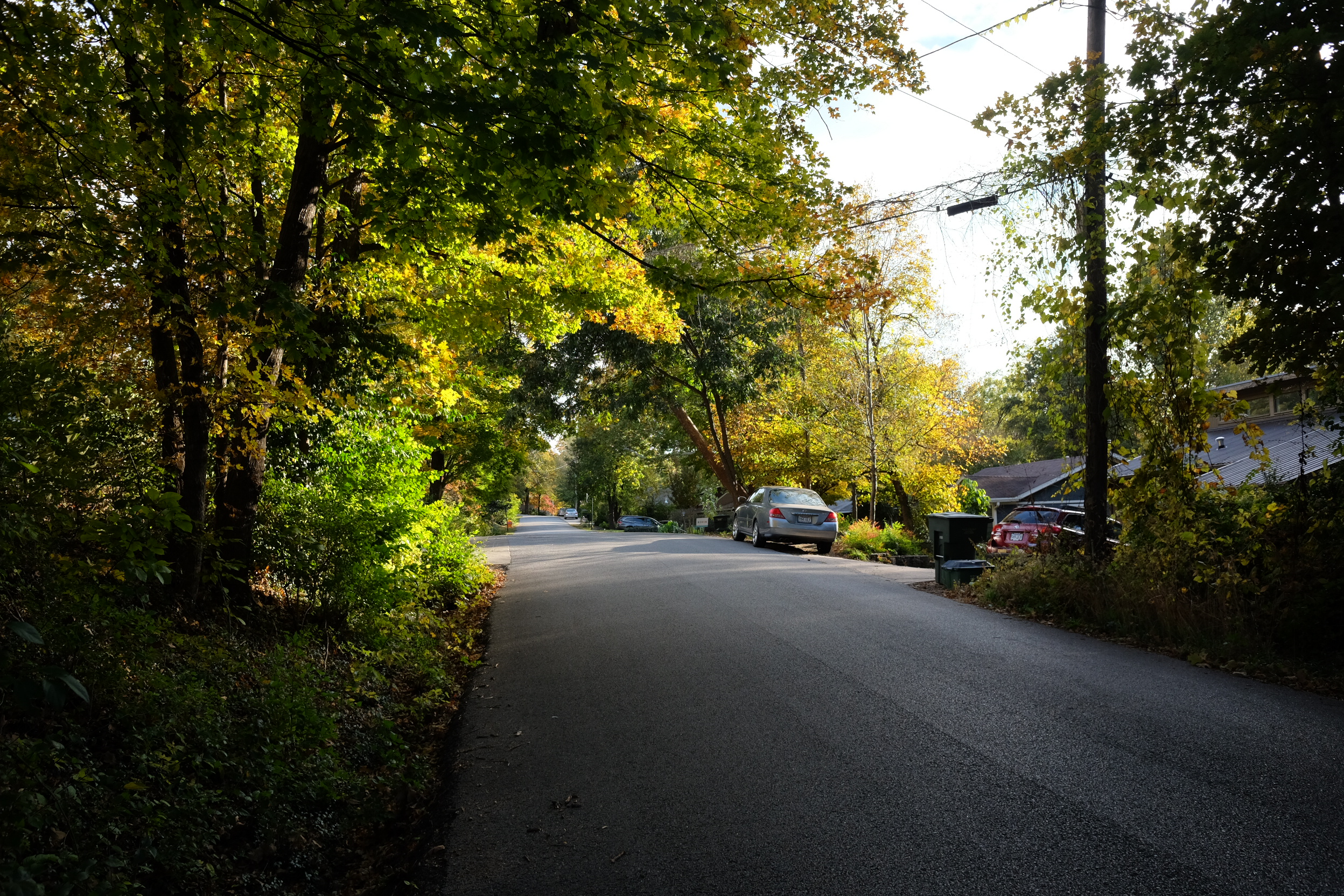 Typical neighborhood street in Fayetteville