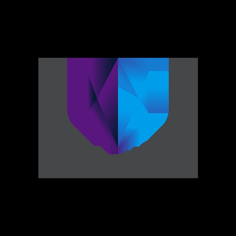 Copy of Team Worth, Identity, Logo