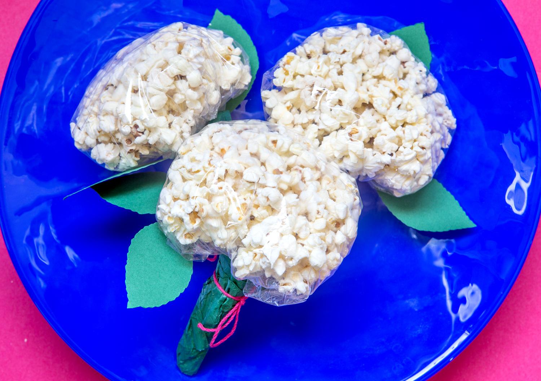 DIY Popcorn hortensior