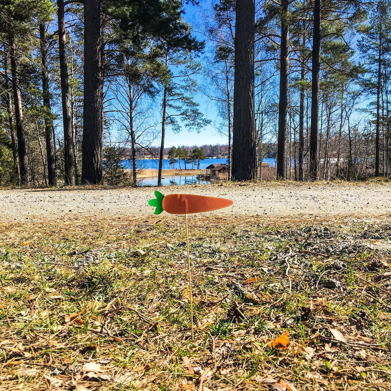 morots skyltar till påsk jakt