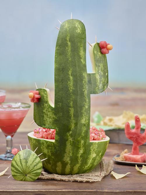 vattenmelons kaktus