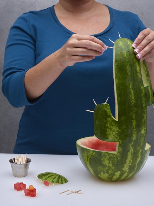 vattenmelons-kaktus-3.png