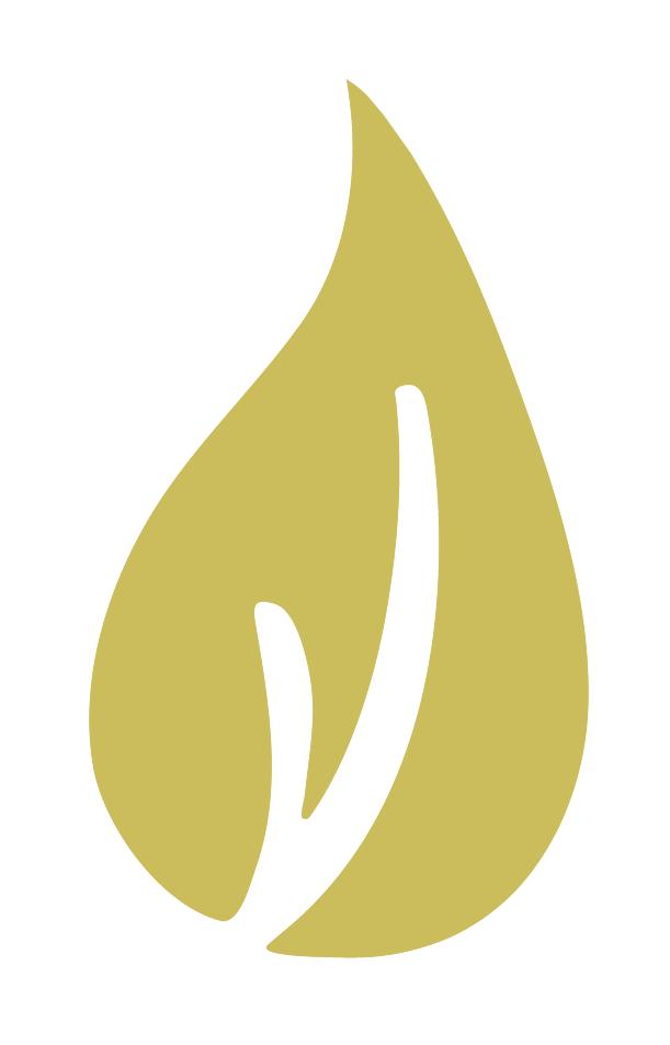 logo design for rustic spunk decor