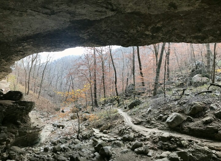 Where the creek and trail meet in front of Cobb Cave.