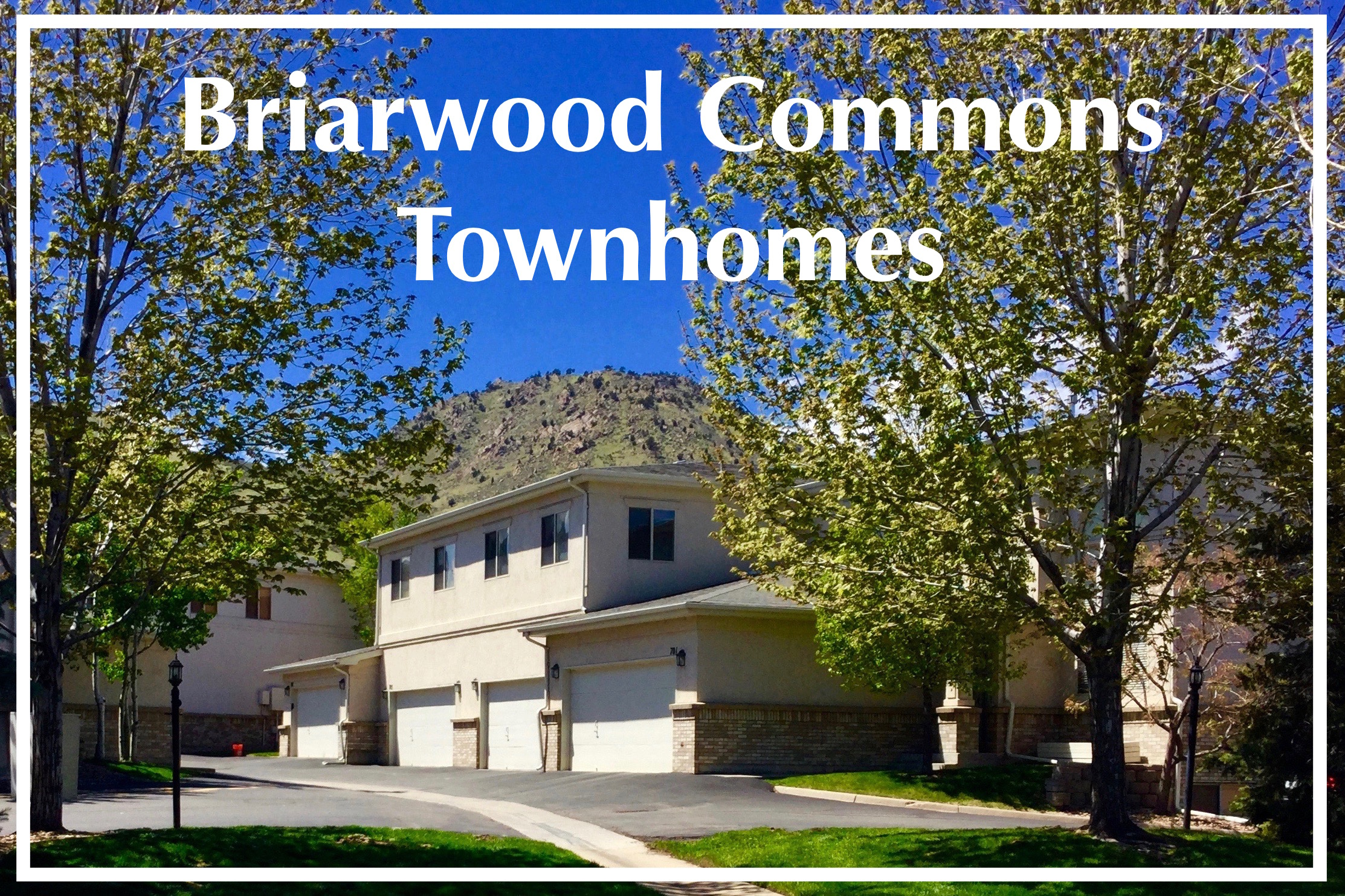 Briarwood Commons.jpg