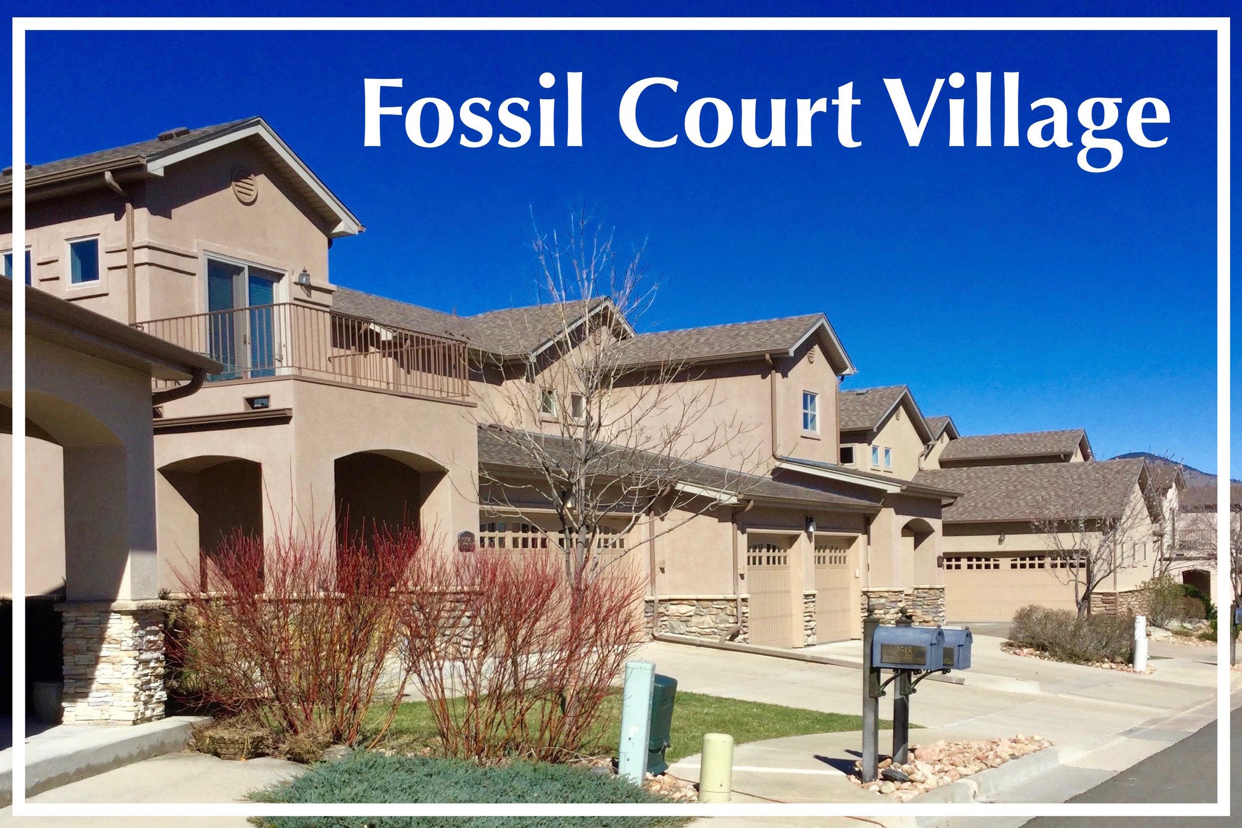 Fossil Court Village.jpg