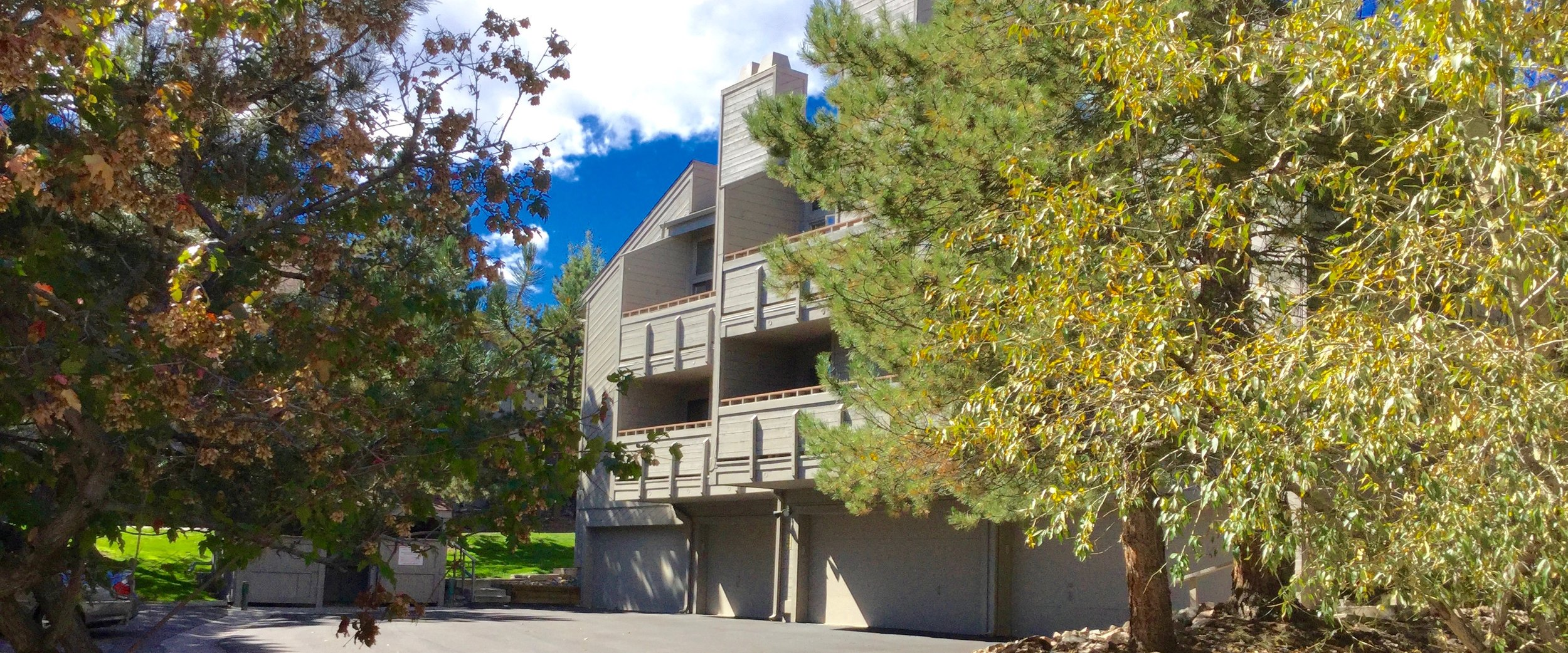 Each Genesee Village Condo features a garage space.