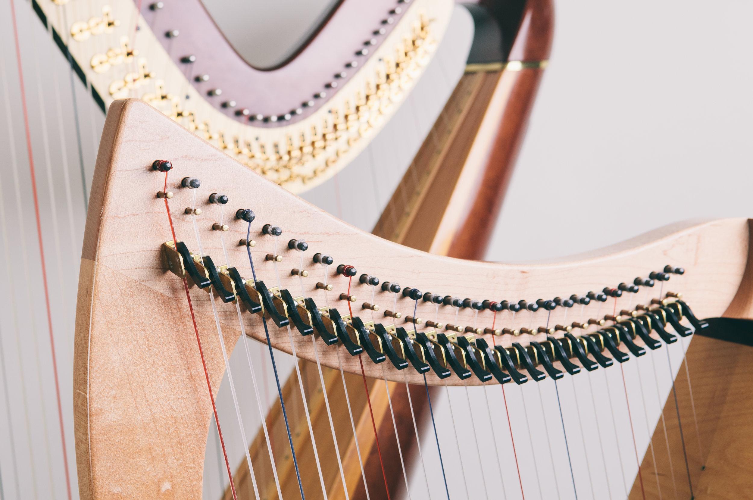 Jess_Harp14_-25.jpg
